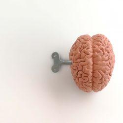 neuromarketing en solliciteren
